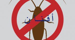 شركه افنان لمكافحه الحشرات